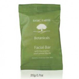 Basic_Earth_Facial_Bar.jpg